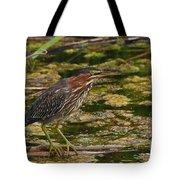 Nervous Green Heron Tote Bag
