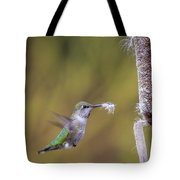 Nest Building Tote Bag by Windy Corduroy
