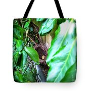Nest In Plain Sight Tote Bag