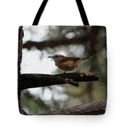 Nest Kneading Tote Bag