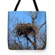 Nesting Bald Eagle Tote Bag