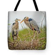 Nesting Blue's Tote Bag