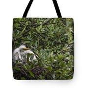 Nesting Chicks Tote Bag