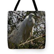 Nesting Egret Tote Bag