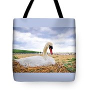 Nesting Mute Swan At Abbotsbury - Impressions Tote Bag