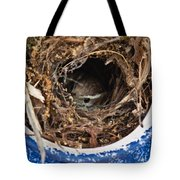 Nesting Wren Tote Bag