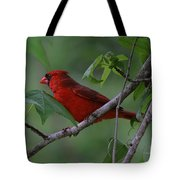 Nestled In The Trees Tote Bag