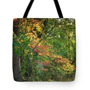 Nestled In The Woods Tote Bag