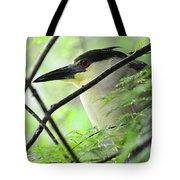 Nestled Night Heron Tote Bag