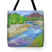 Nevada Oasis Tote Bag