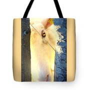 Hold On To Your Dream And Never Ever Give Up Tote Bag by Hilde Widerberg