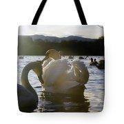 Duddingston Swan 11 Tote Bag