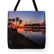 New Day At Econ River Tote Bag