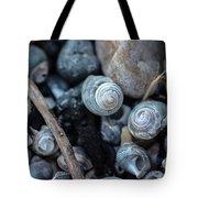 New England Beach Shells Tote Bag