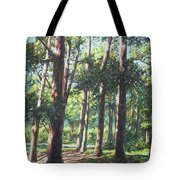New Forest Trees With Shadows Tote Bag
