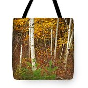 New Growth Old Leaves Tote Bag