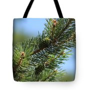 New Growth Pinecone At Chicago Botanical Gardens Tote Bag
