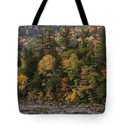 New Hampshire Color Along The Swift River Tote Bag