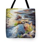 New Hampshire Creek In Fall Tote Bag