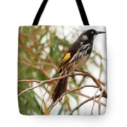 New Holland Honey-eater Tote Bag