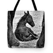 New Life - Friesian Tote Bag