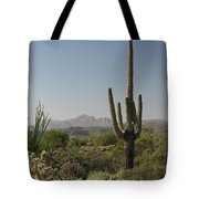 New Mexican Desert Tote Bag