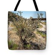 New Mexico Cholla Tote Bag