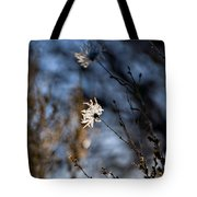 New Mexico Sunlit Desert Weeds Tote Bag