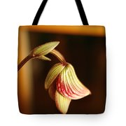 New Orchid Tote Bag