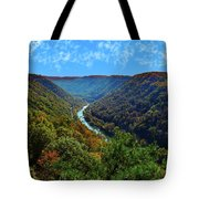 New River Gorge - Autumn Tote Bag