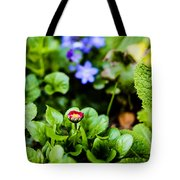 New Season For Bellis Perennis Bellissima Red Tote Bag