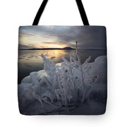 New Year's Eve, Frozen Shrub Tote Bag