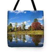 New York Autumn Landscape Tote Bag