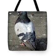 New York City Pigeons # Tote Bag