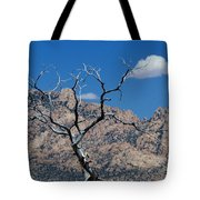 New York Mountains #1 Tote Bag