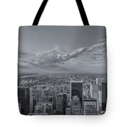 New York Skyline - View On Central Park - 2 Tote Bag