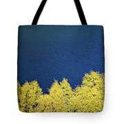 New Zealand Autumn Tote Bag