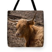 New Zealand Cow Tote Bag