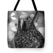 New Zealand Kaka Tote Bag