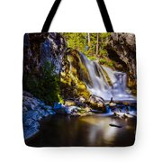 Newberry Country Tote Bag