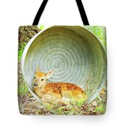 Newborn Fawn Finds Shelter In An Old Washtub Tote Bag