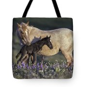 Newborn Filly At Dawn Tote Bag