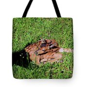 Newborn Red Deer Tote Bag