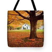 Newbury Common Tote Bag