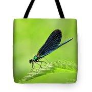 Beautiful Demoiselle Damselfly Tote Bag
