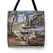 Niagara Falls: Beavers, 1715 Tote Bag