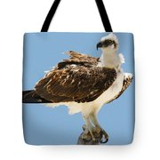 Nice Breeze Tote Bag