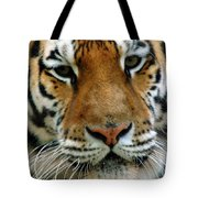 Nice Cat Tote Bag