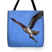 Nice Catch Tote Bag