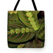 Nice Leaves Tote Bag